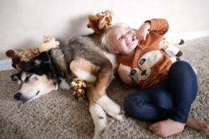 Adopt a Shelter Dog Month MCAH